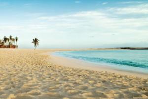 Beaches_CoveBeach